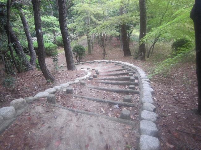 大倉公園11.jpg