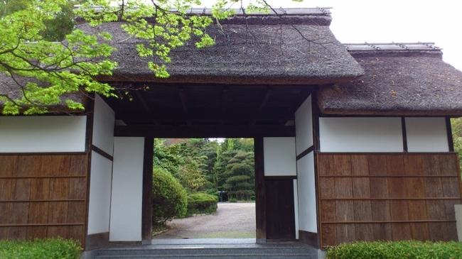 大倉公園18.jpg