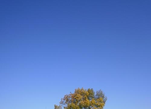 春空1.jpg